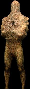 Armless Man Model