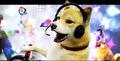 Thumbnail for version as of 01:12, November 1, 2015