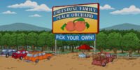 Freestone Family Peach Orchard