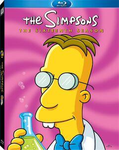 SimpsonsSeason16BluRay