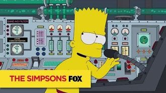 "THE SIMPSONS Attention Please from ""Lisa the Veterinarian"" ANIMATION on FOX"