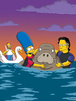 Bonfire of the Manatees