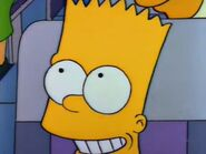 Mr. Lisa Goes to Washington 51