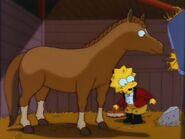 Lisa's Pony 72