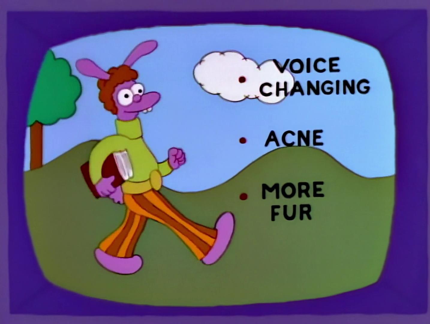 File:Fuzzy-Bunny.jpg