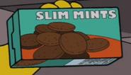 Slimints