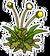 Weedsu