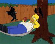 Homer-hammock2