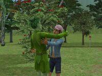 Moss greets Cherry Rose