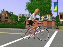Bleeh Simself Bike