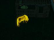 Transmutedhorse