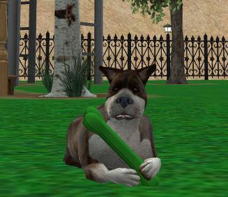 File:Porthos Roseland In-game.jpg