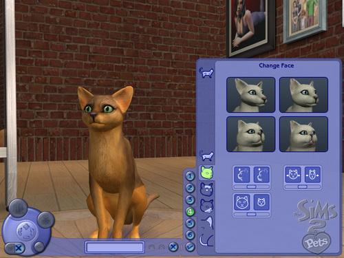 File:Sims2ppcscrncapcatfacewm.jpg