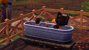 TS3Seasons Applebobbing