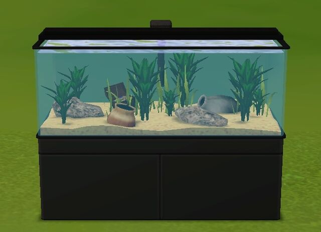 File:All My Fishes Aquarium.jpg