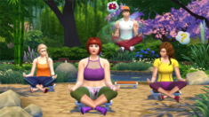 TS4Wellness