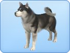 File:Breed-l05.png