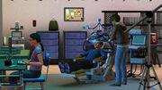 Sims experimenting