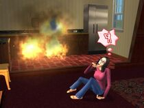 The Sims 2 Depression