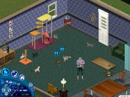 The Sims Unleashed 01