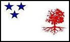 MS-Zastava10