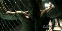 Oliver Queen/Season Nine