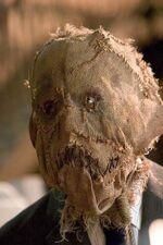 Scarecrowcrane
