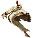 Mr. Karate S