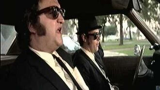 Profiles in Freedom Blues Brothers - Illinois Nazis