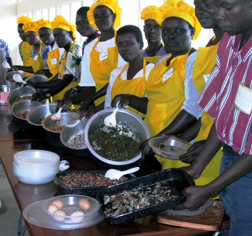File:Nyakach trainers ready to serve solar cooked food.jpg