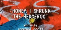 Honey, I Shrunk the Hedgehog