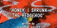 Honey, I Shrunk the Hedgehog