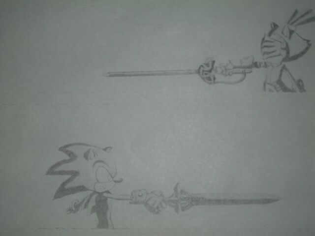 File:Sonic and blaze.draw.jpg