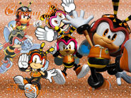 Charmy Bee Wallpaper FlopiSega