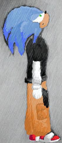 File:Sonic Circle Rain.png