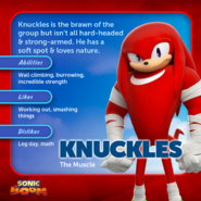 Knuckles (Sonic Boom) profile
