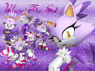 Blaze The Cat Wallpaper FlopiSega