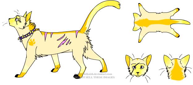 File:Warrior cat version of me.png
