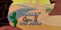 Coachnik