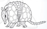 Enraged Armadillo art