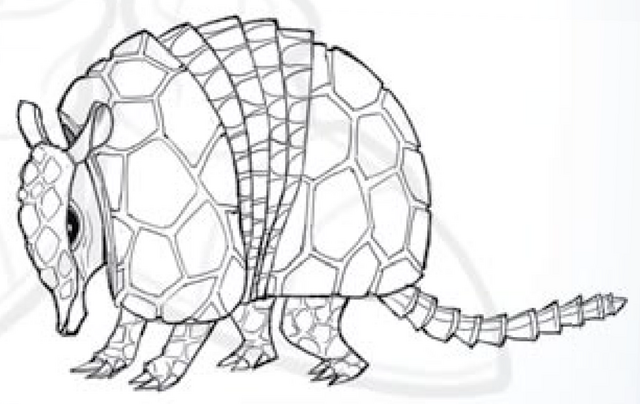 File:Enraged Armadillo art.png