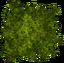 Spr tree All 228x226