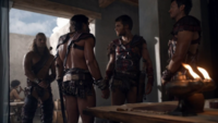 Spartacus W.O.D.