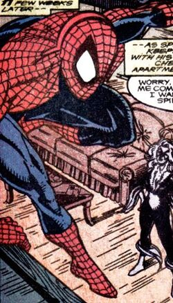 Spider-man What if Married black cat