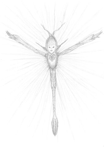 File:Sylph by xdion-d30jlh7.jpg