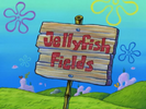 1 - Tips for Jellyfish Fields