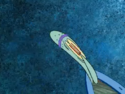 Squidteardrop