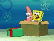 Idiot Box 107