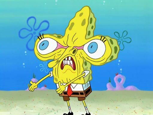 File:Spongebobfacefreeze1.jpg