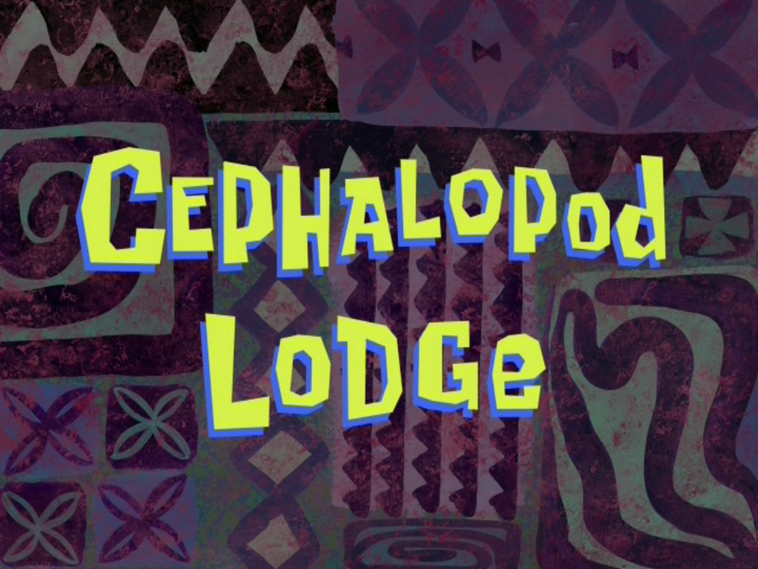 Image result for cephalopod lodge